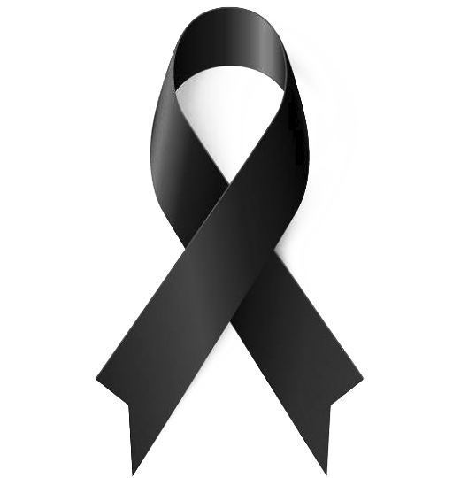 kisspng-black-ribbon-awareness-ribbon-ribbon-black-5b4be91e1f1391.1314380115317015341273.png